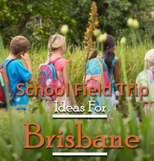 School Field Trip Ideas For Brisbane