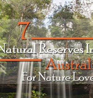 7 Natural Reserves In Australia For Nature Lovers