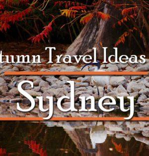 Autumn Travel Ideas For Sydney