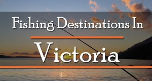 Fishing Destinations In Victoria