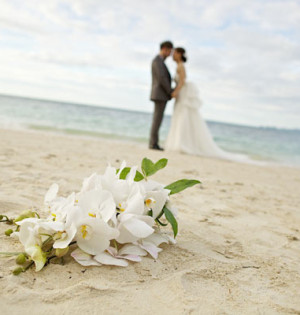 wedding coach service australia